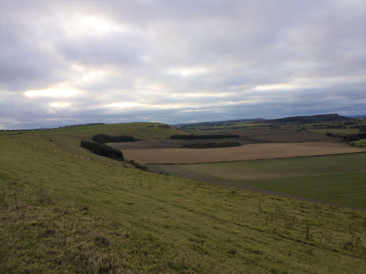12 Walks of Christmas - Day 5 - Cranborne Chase