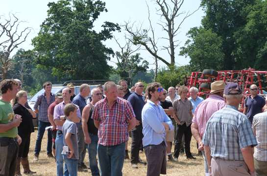 Buyers fly in for Dorset's largest dispersal sale of the year