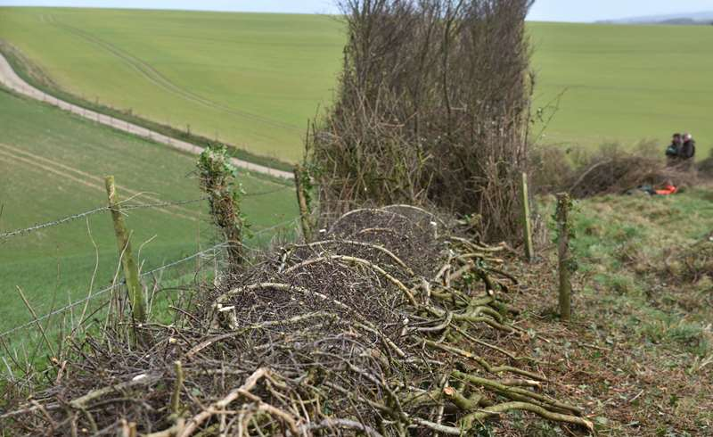 Hedge Today, Gone Tomorrow?