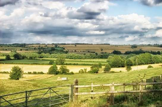 Countryside Stewardship Grants Available