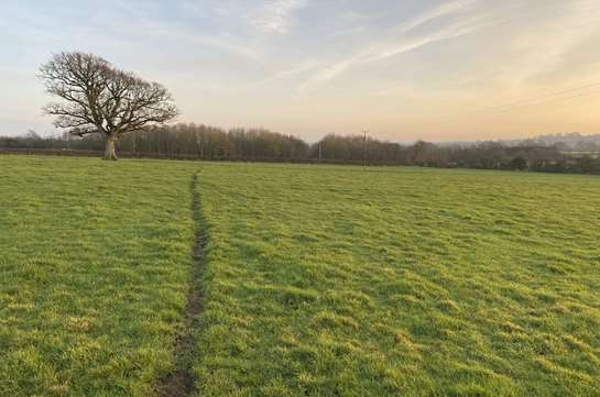 Agricultural land to rent in Somerset